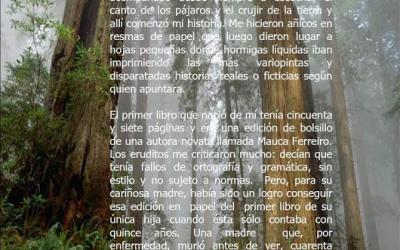 SECCIÓN HOY RECUPERO: TRANSMUTAR