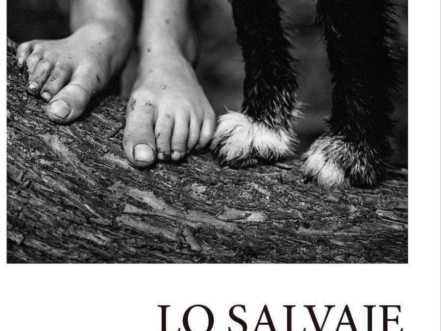SECCIÓN HOY RECOMIENDO UN LIBRO DE POESÍA: LO SALVAJE DE VEGA CEREZO